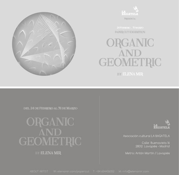 organic-and-geometric-flyer